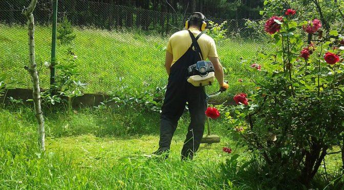 Продължава плановото косене на тревните площи в Търговище