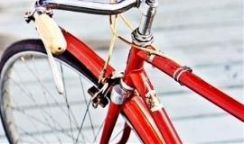 6 ноември – Ден без велосипедисти-жертви на пътя