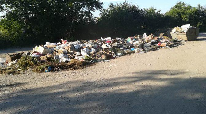 """8 тона отпадъци са извозени от нерегламентирано сметище в """"Драката"""""""