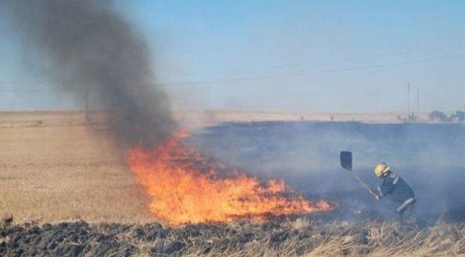 Кметът на Търговище издаде заповед за осигуряване на пожарна безопасност по време на жътвената кампания