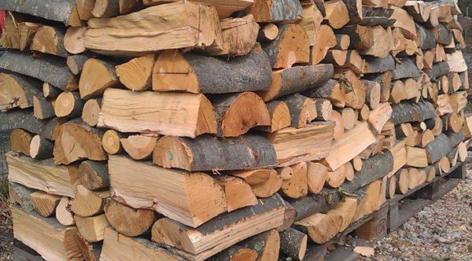 Община Търговище обяви конкурс за доставка на дърва за огрев