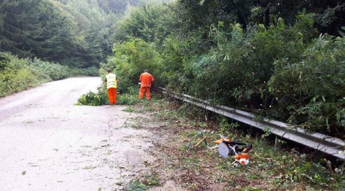 Почистват от растителност пътя Стража-Черковна