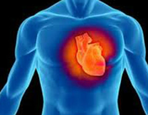 На 29 септември 2018 отбелязваме Световния ден на сърцето