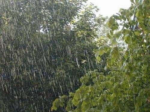 Критична ситуация в района на Попово след обилни валежи